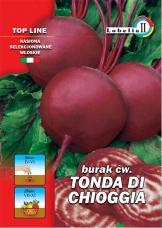 BURAK ćwikłowy Tonda di CHIOGIA