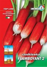 Rzodkiewka FAMBOYAND 2