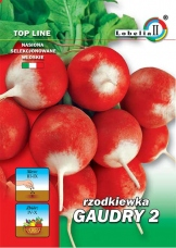 Rzodkiewka GUADRY 2