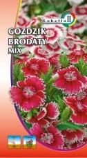 Gozdzik Brodaty mix