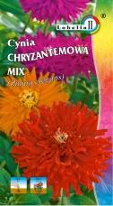 Cynia Chryzantemowa  MIX