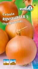 Cebula Rijnsburger
