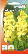 Lewkonia Letnia Żółta